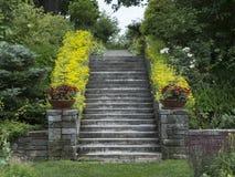 Каменная лестница с цветками на поручне Стоковые Фото