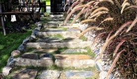 Каменная лестница украшенная с цветками, трава около сада естественно стоковая фотография