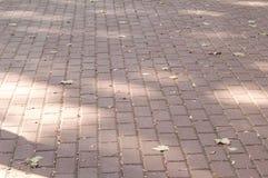 Каменная дорога в городе Стоковые Изображения
