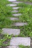 Каменная дорожка к успеху Стоковые Изображения RF