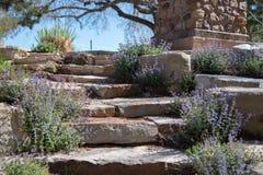 Каменная дорожка Стоковое фото RF