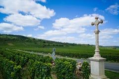 Каменная перекрестная отметка в винограднике стоковые фото