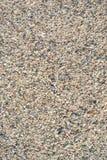 Каменная поверхность на пляже Стоковое Изображение RF