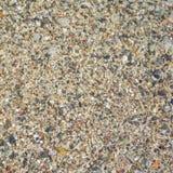 Каменная поверхность на пляже Стоковое фото RF