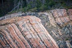Каменная поверхность около леса Shevelev Стоковые Изображения RF