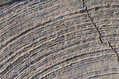 Каменная поверхность с царапинами дуги Стоковые Фотографии RF