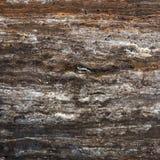 Каменная поверхность для декоративных работ Стоковая Фотография RF