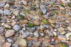 Каменная предпосылка пляжа Стоковое фото RF
