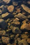 Каменная предпосылка Стоковые Фото