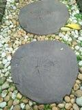 Каменная прогулка Стоковая Фотография