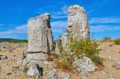 Каменная пустыня стоковое фото