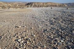 Каменная пустыня Стоковое Изображение