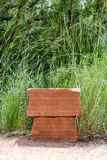 Каменная платформа Стоковые Фото