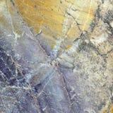 Каменная серия текстуры Стоковое Изображение