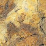 Каменная серия текстуры Стоковые Фото
