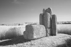 Каменная скульптура в полях Monochrome Стоковые Фото