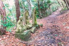 Каменная статуя Будды на пути в лесе Стоковая Фотография RF