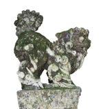 Каменная статуя льва попечителя в въетнамских висках, изолированных на белой предпосылке Стоковое Изображение