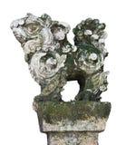 Каменная статуя льва попечителя в въетнамских висках, изолированных на белой предпосылке Стоковая Фотография