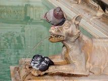 Каменная статуя собаки с 2 голубями Стоковые Фото