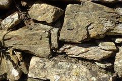 Каменная стена в лесе Стоковые Фото