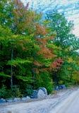Каменная стена вдоль заросшей лесом глуши на день осени Стоковая Фотография