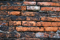 Каменная стена от Таиланда contry Стоковое Изображение RF