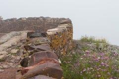Каменная стена рядом с розовыми и белыми цветками на туманный день Стоковая Фотография