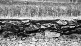 Каменная стена: эта каменная стена в парке Стоковые Изображения RF