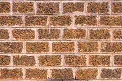Каменная стена Стоковые Фото