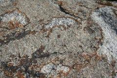 Каменная текстура в макросе Стоковые Фотографии RF