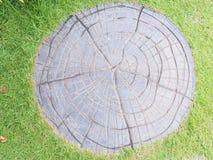 Каменная текстура пола в саде Стоковое Изображение RF