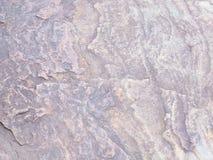Каменная текстура пола в саде Стоковые Фотографии RF