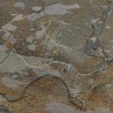 Каменная текстура с точной деталью Стоковые Изображения