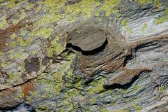 Каменная текстура с хорошей деталью стоковая фотография rf