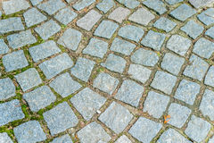 Каменная текстура тропы куба волнистая, раскосный, мох Стоковая Фотография RF