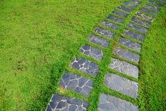 Каменная трава пути прогулки блока Стоковые Изображения