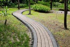 Каменная тропа в зеленом парке Стоковые Изображения RF