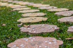 Каменная лужайка зеленого цвета дорожки Стоковое Изображение