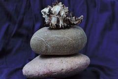 Каменная установка Стоковая Фотография RF