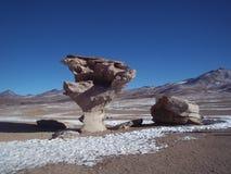 Каменное дерево стоковое фото rf