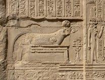 Каменное иероглифическое резное изображение на виске Kom Ombo стоковое фото