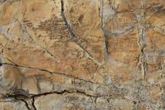 каменное одичалое Стоковое Изображение RF