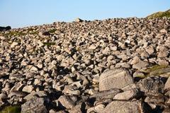 Каменное поле стоковое фото