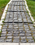 Каменное Пэт прогулки блока Стоковое Изображение RF