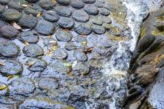 Каменное резное изображение в реке на Kbal Spean стоковое фото