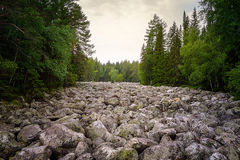 Каменное река Стоковые Фото