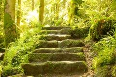 Каменное closeuo лестниц стоковые фото