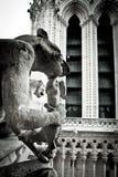 Каменные горгульи Нотр-Дам Стоковые Фотографии RF