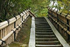 Каменные лестницы с рельсами бамбуковыми Стоковое Изображение